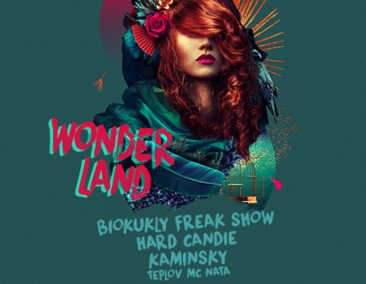 """Wonderland night show"""